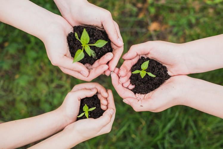 sustentabilidade produtividade smart3